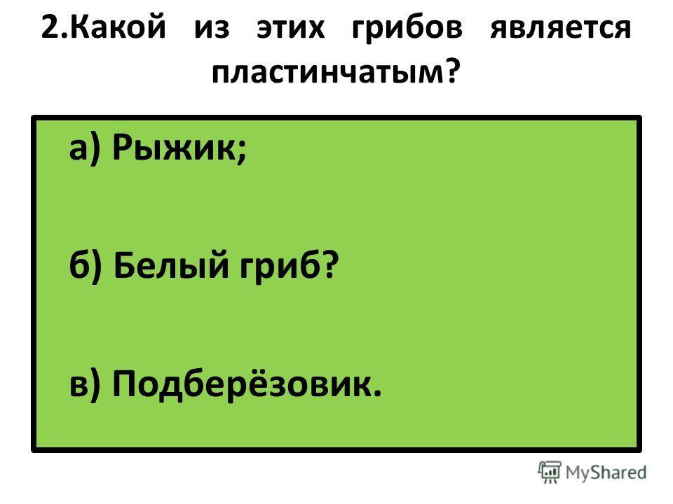 2. Какой из этих грибов является пластинчатым? а) Рыжик; б) Белый гриб? в) Подберёзовик.