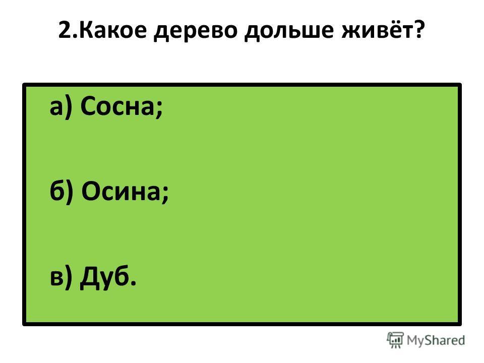 2. Какое дерево дольше живёт? а) Сосна; б) Осина; в) Дуб.