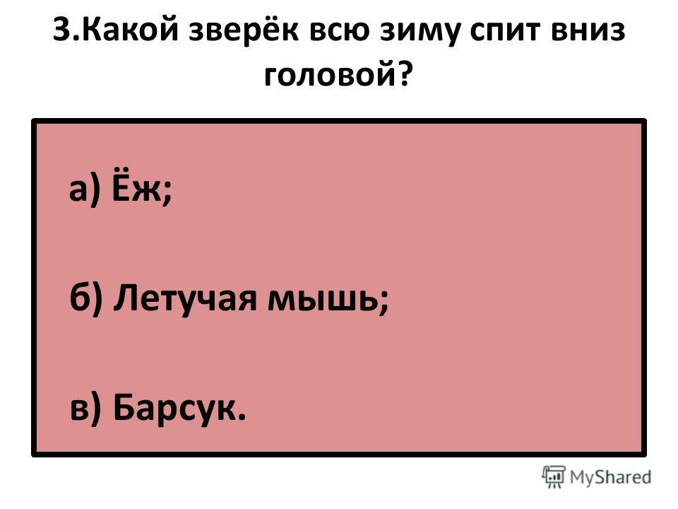 3. Какой зверёк всю зиму спит вниз головой? а) Ёж; б) Летучая мышь; в) Барсук.