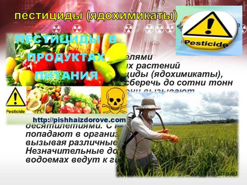 Для борьбы с вредителями сельскохозяйственных растений используются пестициды (ядохимикаты), которые позволяют сберечь до сотни тонн урожая в год. Однако они вызывают серьезные экологические проблемы. Пестициды накапливаются в почве и сохраняются в н