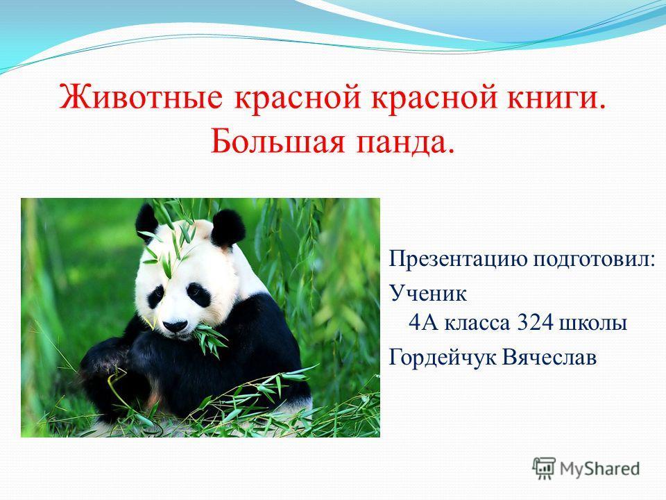 Презентация на тему животные красной книге