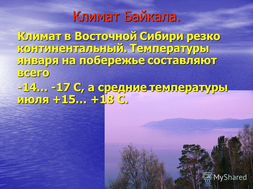 Климат Байкала. Климат в Восточной Сибири резко континентальный. Температуры января на побережье составляют всего Климат в Восточной Сибири резко континентальный. Температуры января на побережье составляют всего -14… -17 С, а средние температуры июля