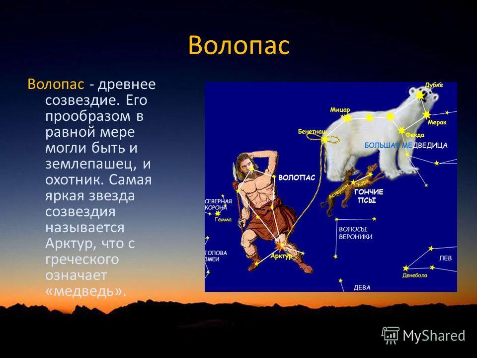 Волопас Волопас - древнее созвездие. Его прообразом в равной мере могли быть и землепашец, и охотник. Самая яркая звезда созвездия называется Арктур, что с греческого означает «медведь».