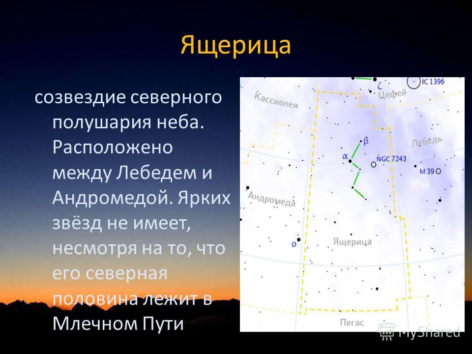 Ящерица созвездие северного полушария неба. Расположено между Лебедем и Андромедой. Ярких звёзд не имеет, несмотря на то, что его северная половина лежит в Млечном Пути