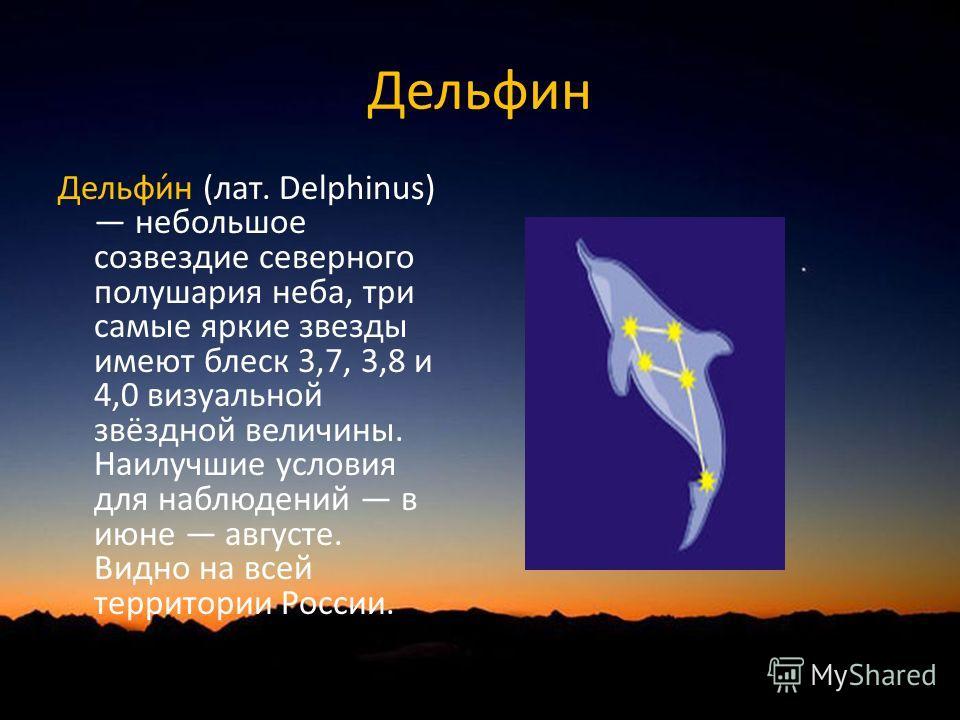 Дельфин Дельфи́н (лат. Delphinus) небольшое созвездие северного полушария неба, три самые яркие звезды имеют блеск 3,7, 3,8 и 4,0 визуальной звёздной величины. Наилучшие условия для наблюдений в июне августе. Видно на всей территории России.