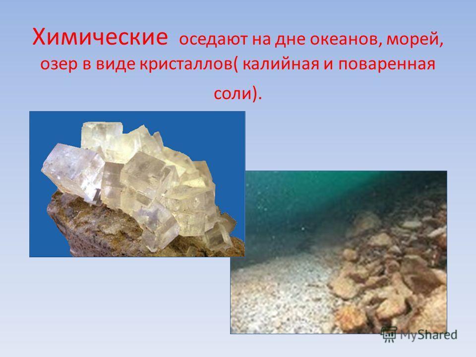 Химические оседают на дне океанов, морей, озер в виде кристаллов( калийная и поваренная соли).