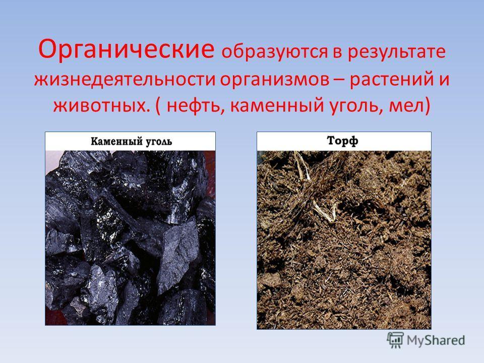 Органические образуются в результате жизнедеятельности организмов – растений и животных. ( нефть, каменный уголь, мел)