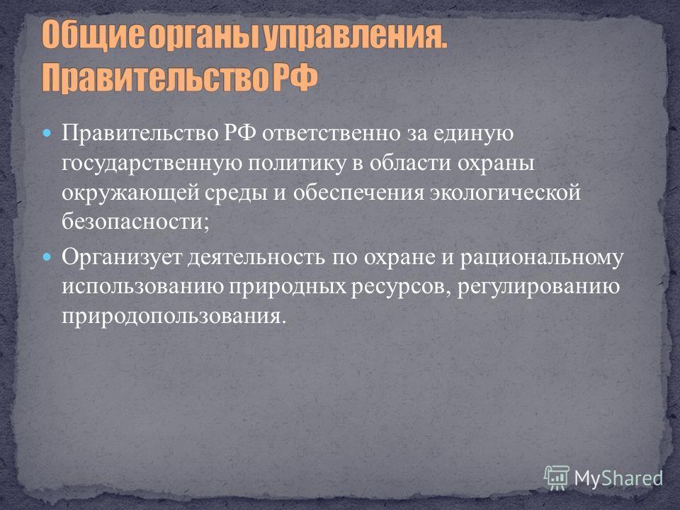 Правительство РФ ответственно за единую государственную политику в области охраны окружающей среды и обеспечения экологической безопасности; Организует деятельность по охране и рациональному использованию природных ресурсов, регулированию природополь