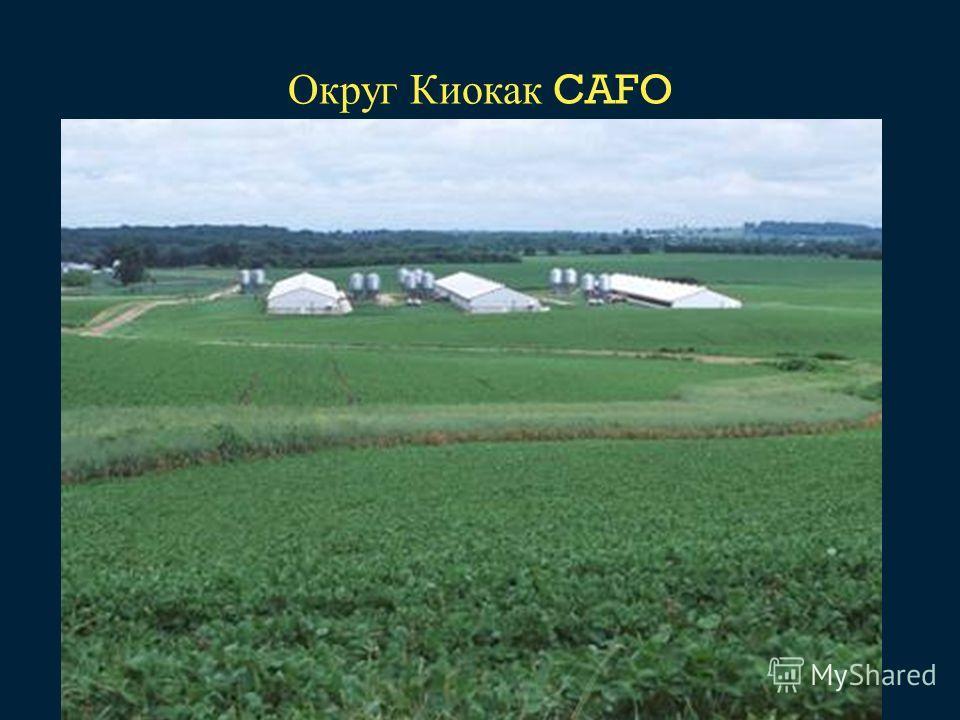 Округ Киокак CAFO