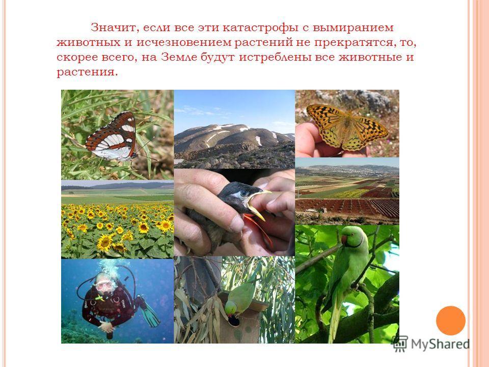 Значит, если все эти катастрофы с вымиранием животных и исчезновением растений не прекратятся, то, скорее всего, на Земле будут истреблены все животные и растения.