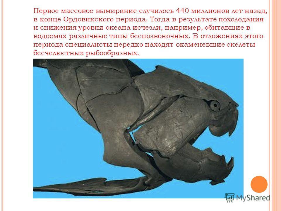 Первое массовое вымирание случилось 440 миллионов лет назад, в конце Ордовикского периода. Тогда в результате похолодания и снижения уровня океана исчезли, например, обитавшие в водоемах различные типы беспозвоночных. В отложениях этого периода специ