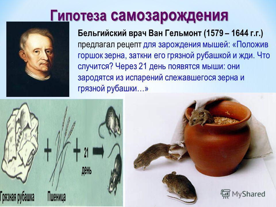 Бельгийский врач Ван Гельмонт (1579 – 1644 г.г.) предлагал рецепт для зарождения мышей: «Положив горшок зерна, заткни его грязной рубашкой и жди. Что случится? Через 21 день появятся мыши: они зародятся из испарений слежавшегося зерна и грязной рубаш