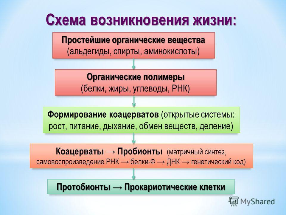 Схема возникновения жизни: Протобионты Прокариотические клетки Простейшие органические вещества Простейшие органические вещества (альдегиды, спирты, аминокислоты) Органические полимеры (белки, жиры, углеводы, РНК) Формирование коацерватов (открытые с