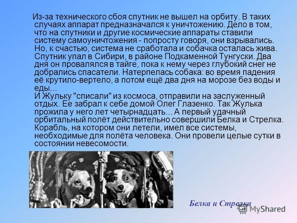 Некоторые собаки летали в космос несколько раз. Например одна из таких космонавток – Жулька. При запусках ей давали разные, более благозвучные имена. В одном полете она звалась Жемчужиной, в другом - Пушинкой. Хорошенькая такая, пушистая, беленькая,