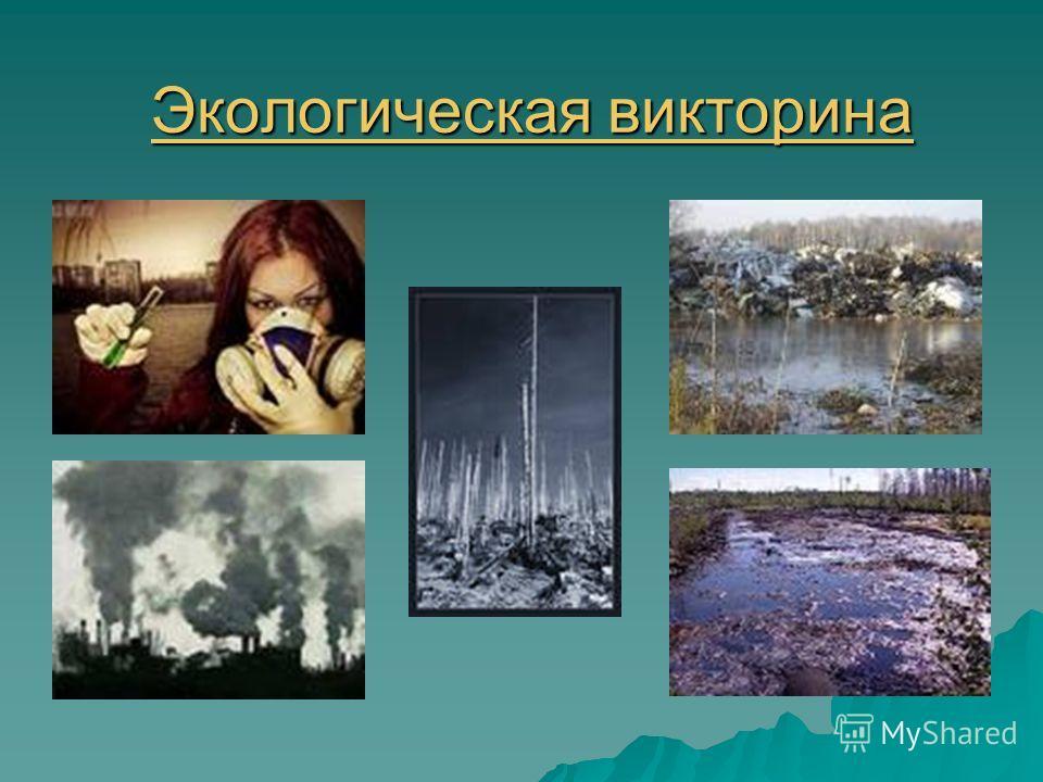 Экологическая викторина Экологическая викторина