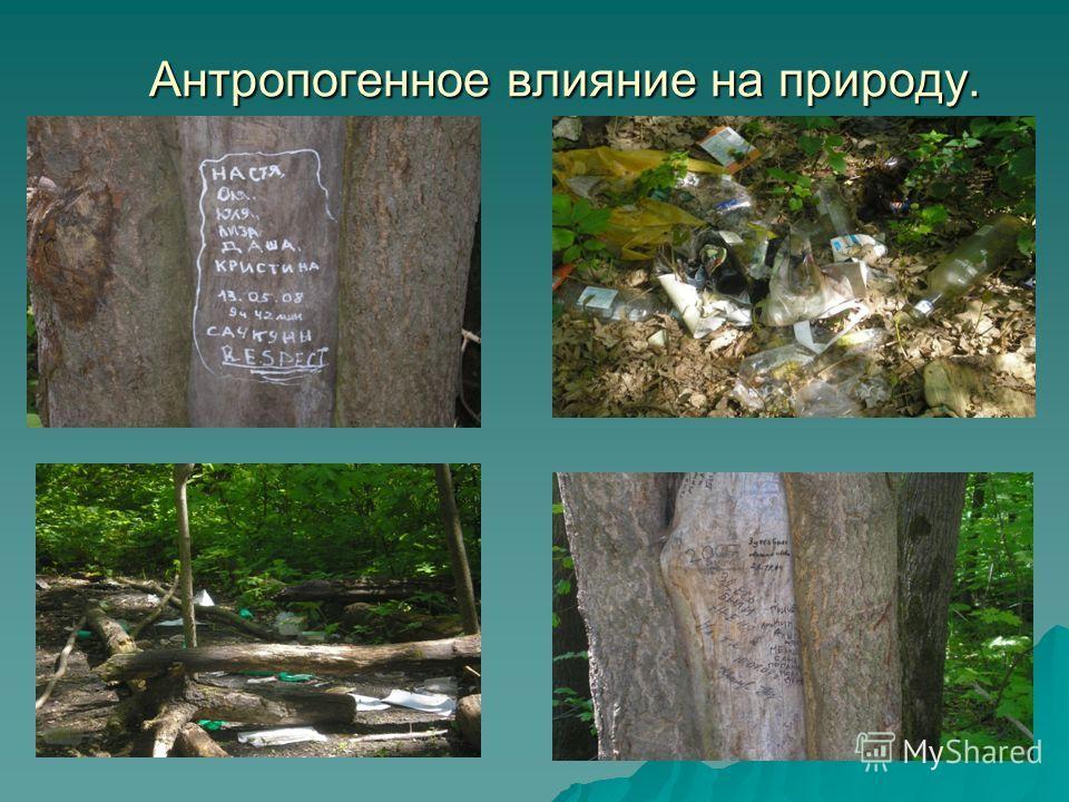 Антропогенное влияние на природу. Антропогенное влияние на природу.