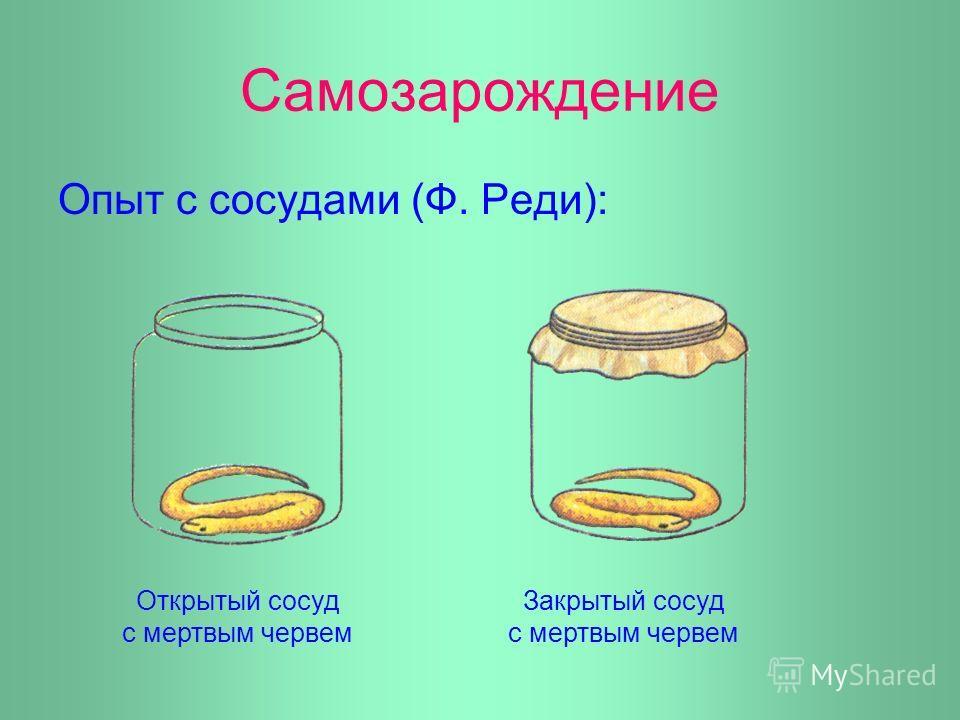 Самозарождение Опыт с сосудами (Ф. Реди): Открытый сосуд с мертвым червем Закрытый сосуд с мертвым червем