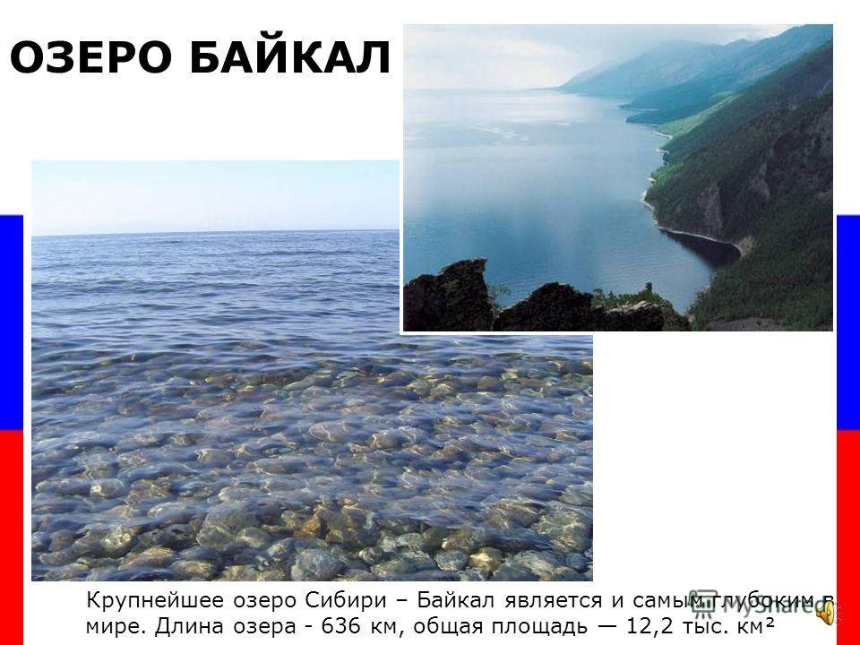 ИССЫК -КУЛЬ ЛАДОЖСКОЕ ОНЕЖСКОЕ Крупнейшие озера Европейской части России - это ОЗЕРА РОССИИ ЧУДСКОЕ ОЗЕРО