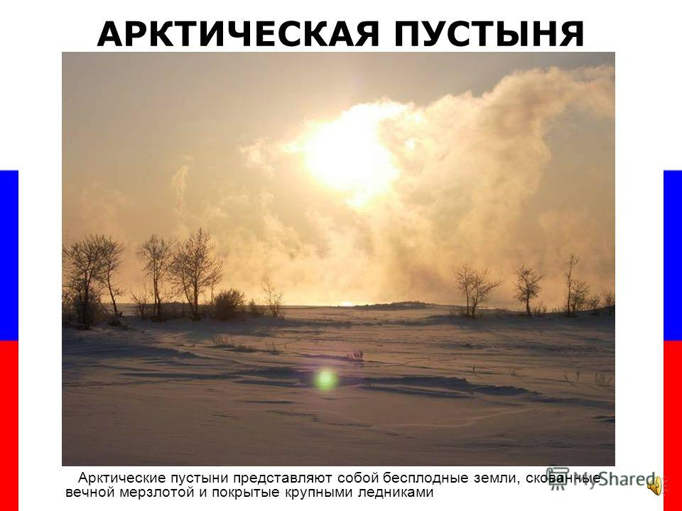 Климатические условия, почвы, растительность и животный мир находятся в тесной взаимосвязи. В пределах России выделяют природные зоны – арктическая пустыня, тундра, лесотундра, тайга, смешанные и широколиственные леса, степи и пустыни. ПРИРОДНЫЕ ЗОНЫ