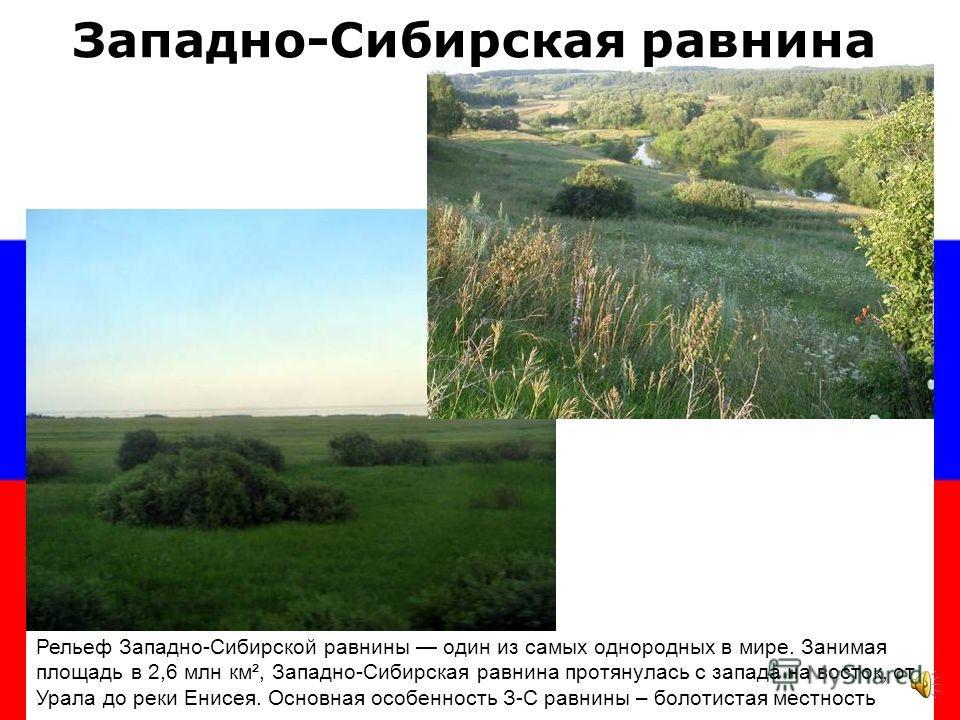 Значительная часть Европейской части России расположена на одной из крупнейших равнин мира – Восточно-Европейской (Русской) Восточно-Европейская равнина