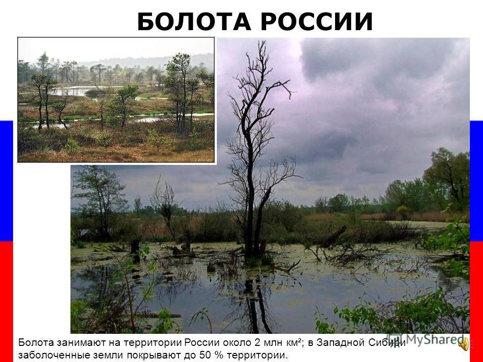 Рельеф Западно-Сибирской равнины один из самых однородных в мире. Занимая площадь в 2,6 млн км², Западно-Сибирская равнина протянулась с запада на восток, от Урала до реки Енисея. Основная особенность З-С равнины – болотистая местность Западно-Сибирс