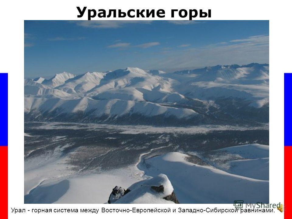 БОЛОТА РОССИИ Болота занимают на территории России около 2 млн км²; в Западной Сибири заболоченные земли покрывают до 50 % территории.