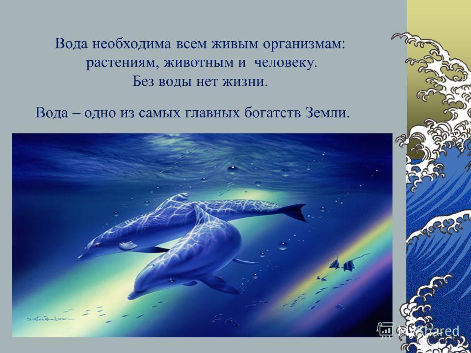 Вода необходима всем живым организмам: растениям, животным и человеку. Без воды нет жизни. Вода – одно из самых главных богатств Земли.