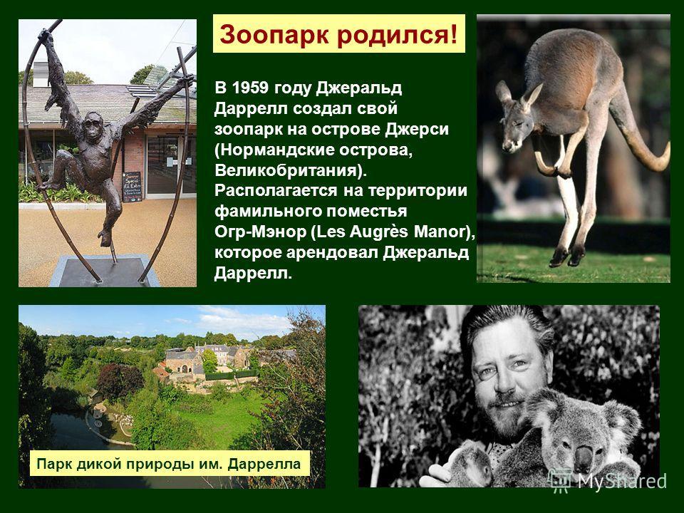 Зоопарк родился! В 1959 году Джеральд Даррелл создал свой зоопарк на острове Джерси (Нормандские острова, Великобритания). Располагается на территории фамильного поместья Огр-Мэнор (Les Augrès Manor), которое арендовал Джеральд Даррелл. Парк дикой пр