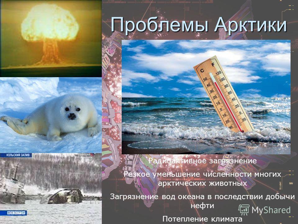 Проблемы Арктики Радиоактивное загрязнение Резкое уменьшение численности многих арктических животных Загрязнение вод океана в последствии добычи нефти Потепление климата