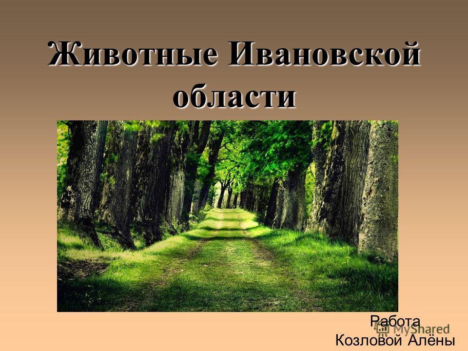 Животные Ивановской области Работа Козловой Алёны