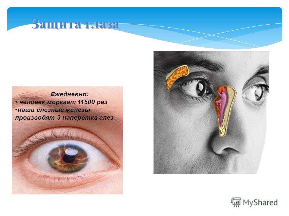 Защита глаза