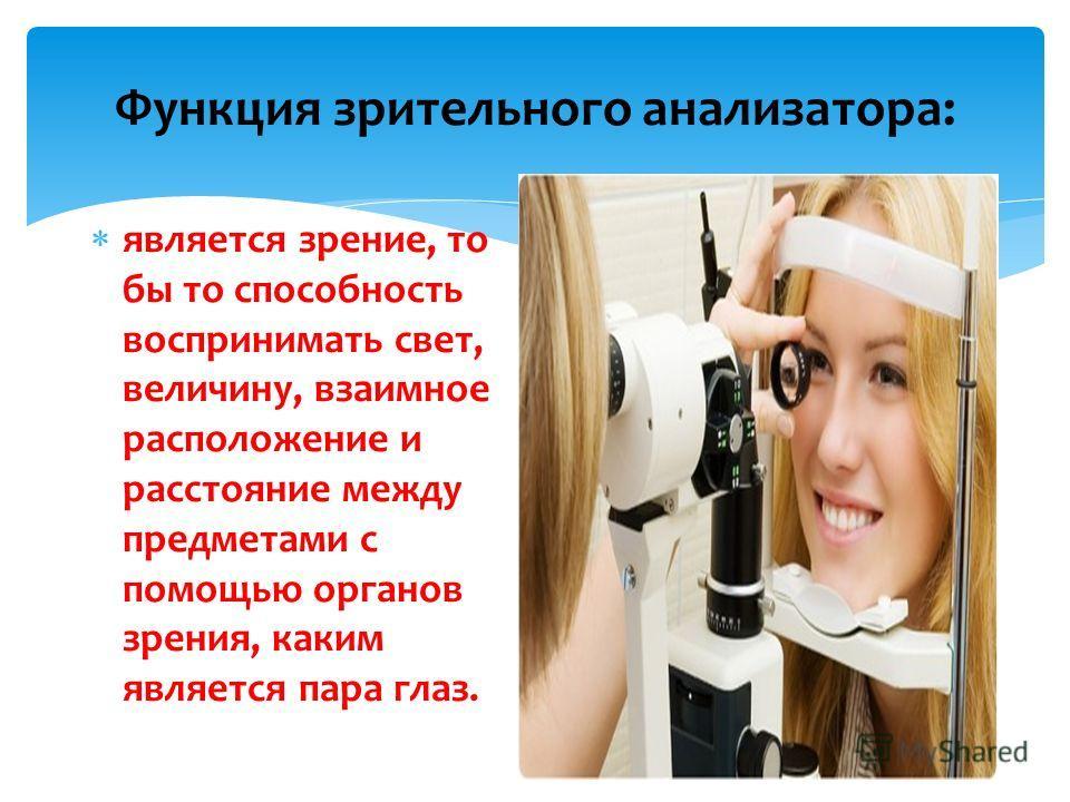 Функция зрительного анализатора: является зрение, то бы то способность воспринимать свет, величину, взаимное расположение и расстояние между предметами с помощью органов зрения, каким является пара глаз.