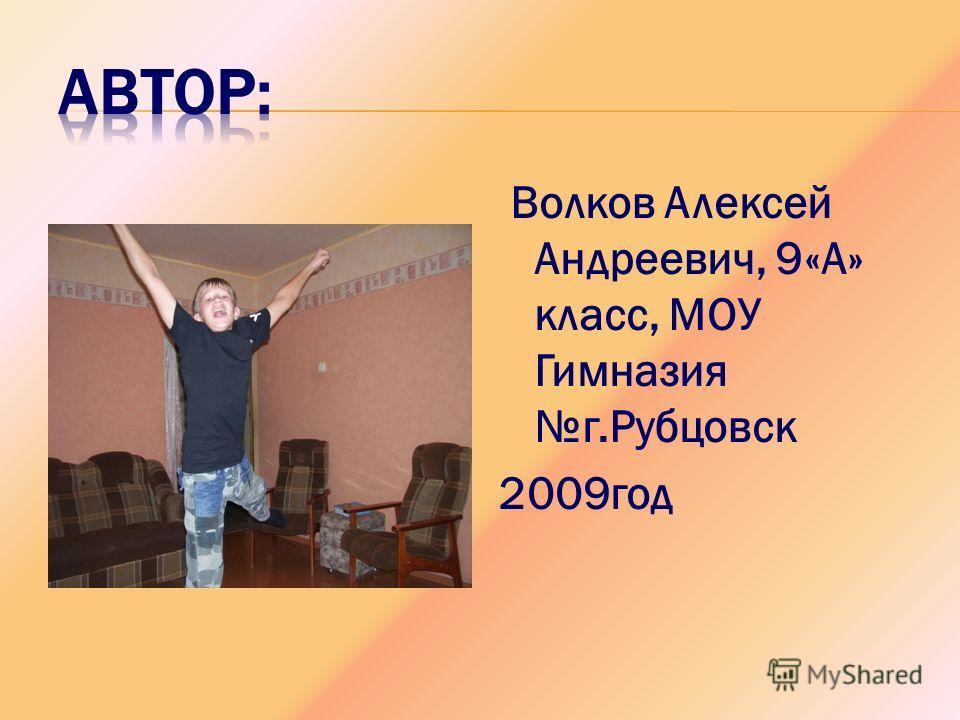 Волков Алексей Андреевич, 9«А» класс, МОУ Гимназия г.Рубцовск 2009 год
