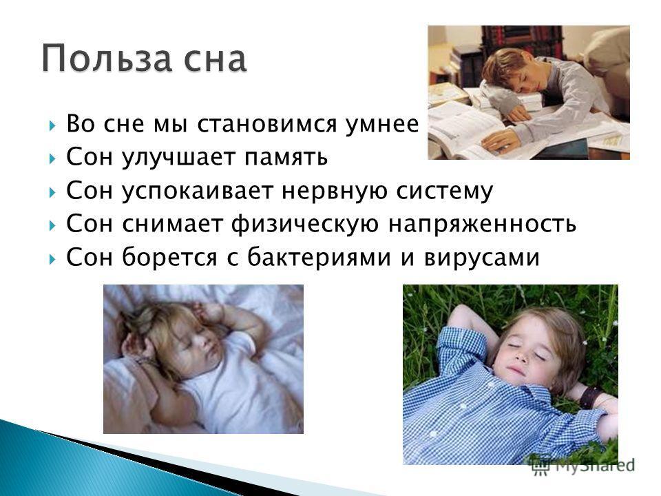 Во сне мы становимся умнее Сон улучшает память Сон успокаивает нервную систему Сон снимает физическую напряженность Сон борется с бактериями и вирусами