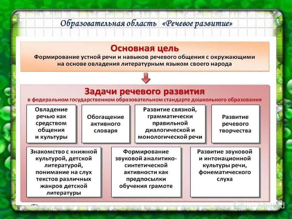 Образовательная область «Речевое развитие»