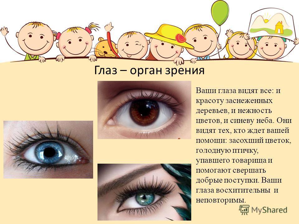 Глаз – орган зрения Ваши глаза видят все: и красоту заснеженных деревьев, и нежность цветов, и синеву неба. Они видят тех, кто ждет вашей помощи: засохший цветок, голодную птичку, упавшего товарища и помогают свершать добрые поступки. Ваши глаза восх