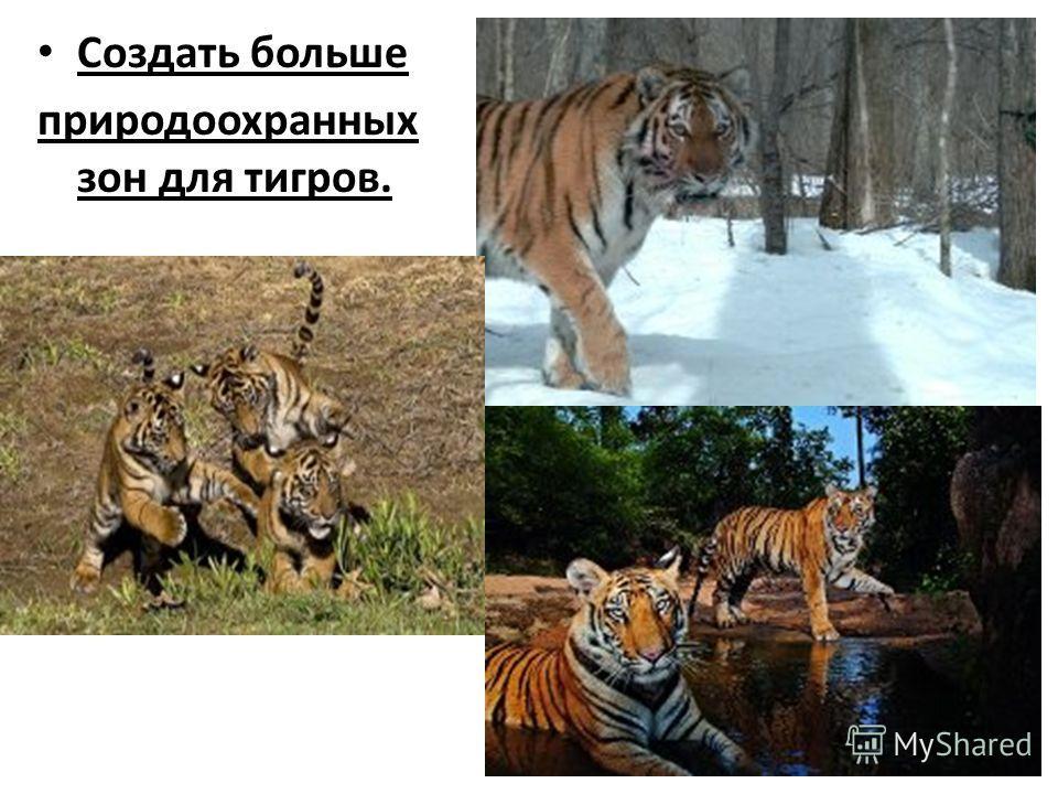 Создать больше природоохранных зон для тигров.