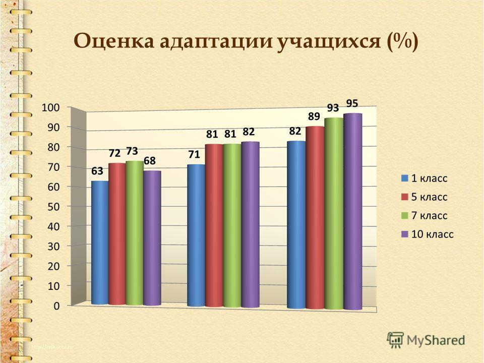 Оценка адаптации учащихся (%)