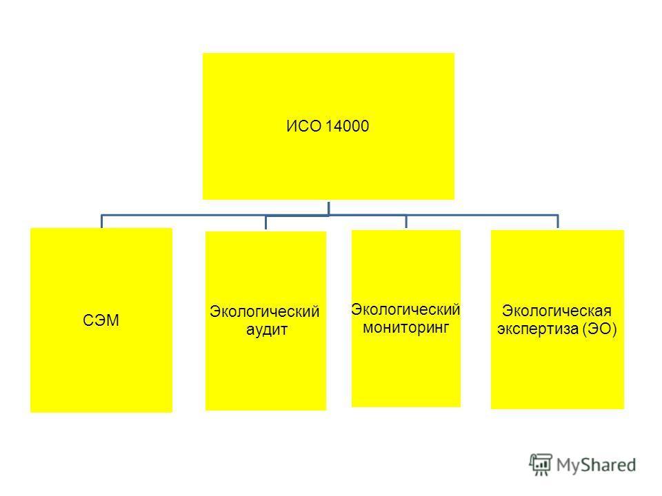 ИСО 14000 СЭМ Экологический аудит Экологический мониторинг Экологическая экспертиза (ЭО)