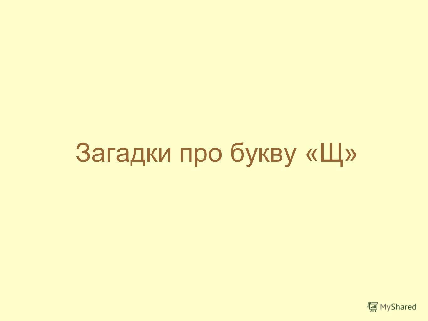 Загадки про букву «Щ»
