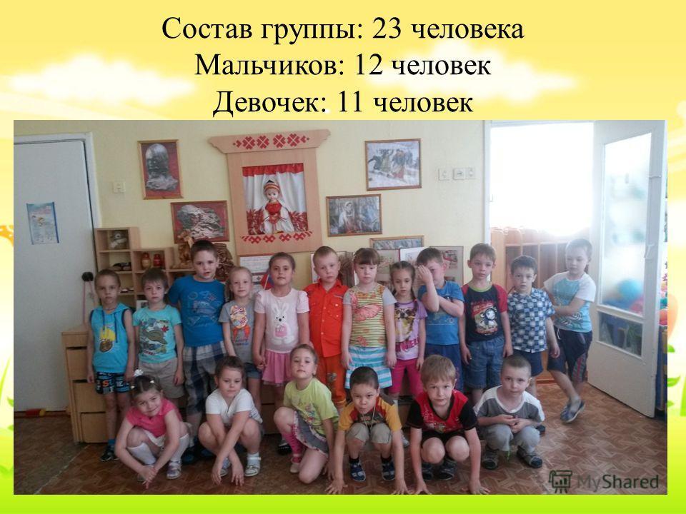 Состав группы: 23 человека Мальчиков: 12 человек Девочек: 11 человек