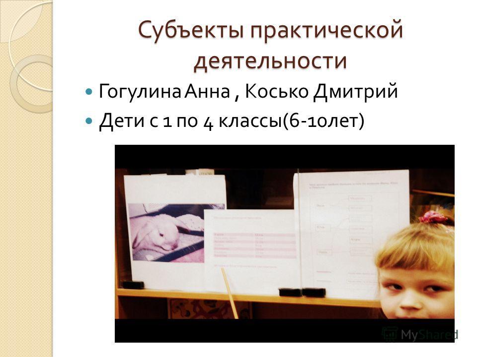 Субъекты практической деятельности Гогулина Анна, Косько Дмитрий Дети с 1 по 4 классы (6-10 лет )