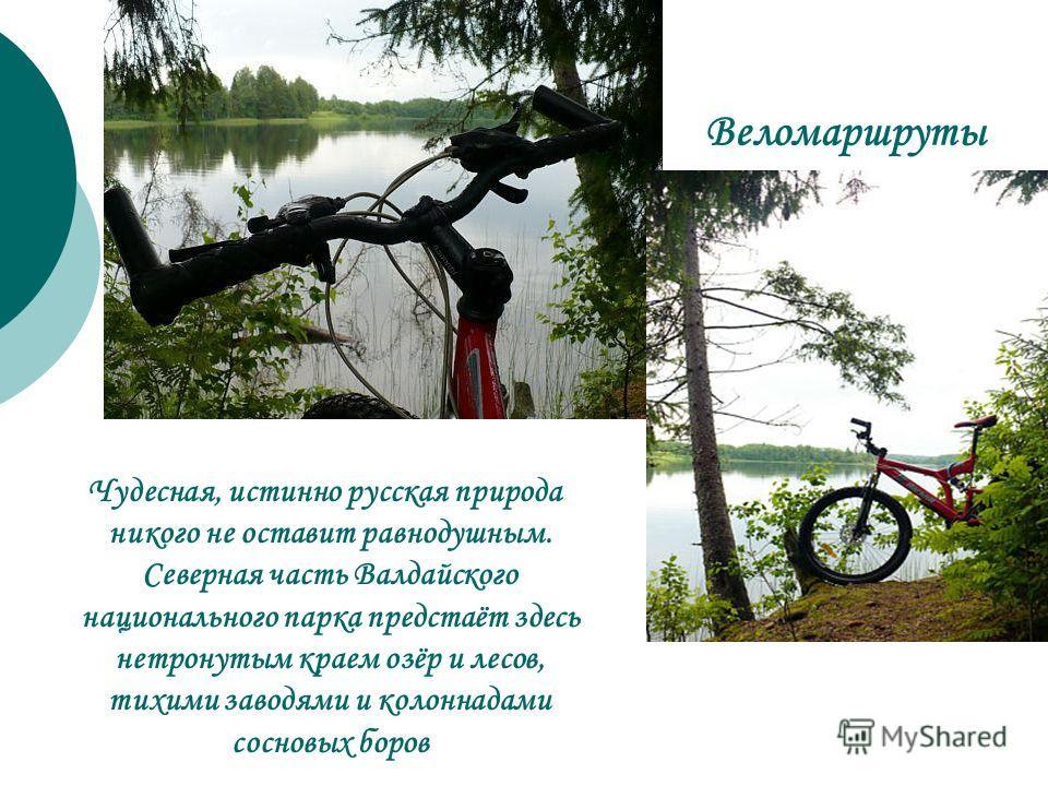 Веломаршруты Чудесная, истинно русская природа никого не оставит равнодушным. Северная часть Валдайского национального парка предстаёт здесь нетронутым краем озёр и лесов, тихими заводями и колоннадами сосновых боров