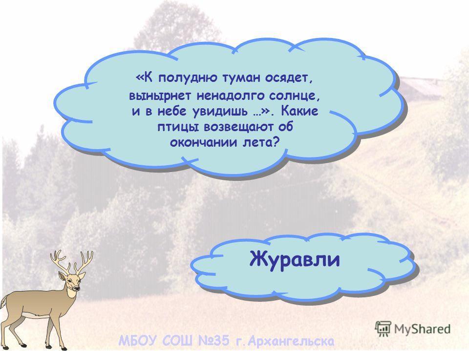 «К полудню туман осядет, вынырнет ненадолго солнце, и в небе увидишь …». Какие птицы возвещают об окончании лета? Журавли