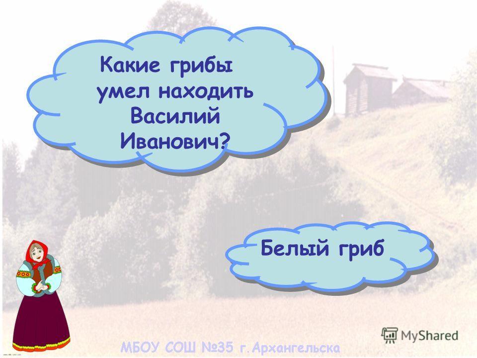 Какие грибы умел находить Василий Иванович? Белый гриб