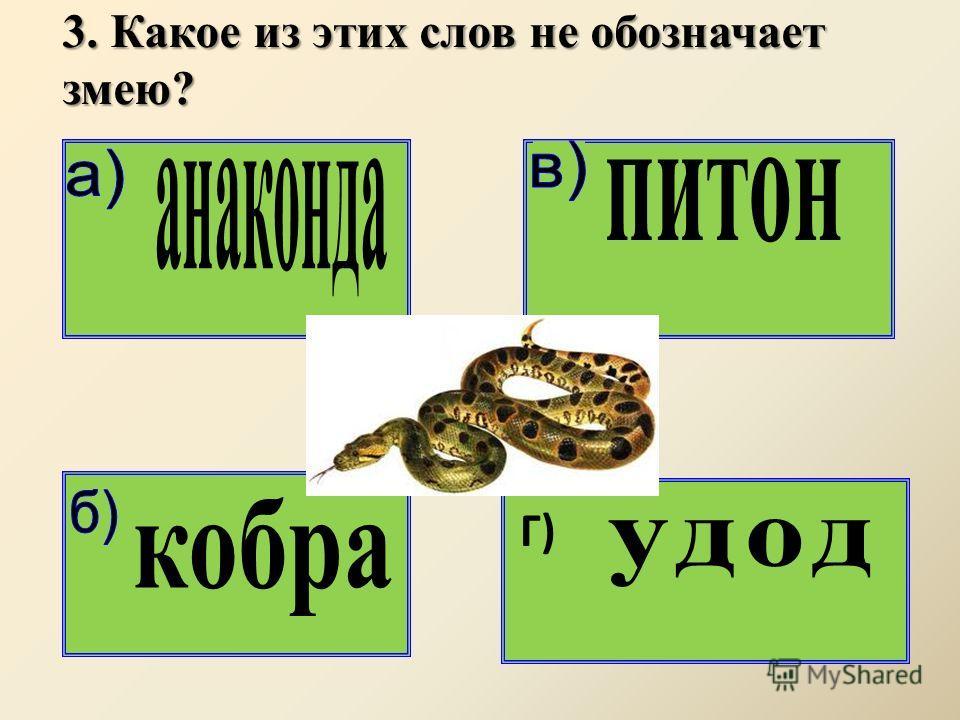 3. Какое из этих слов не обозначает змею? Г)