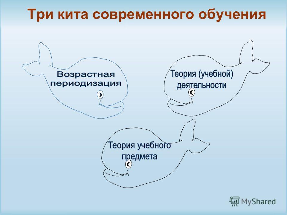 Три кита современного обучения