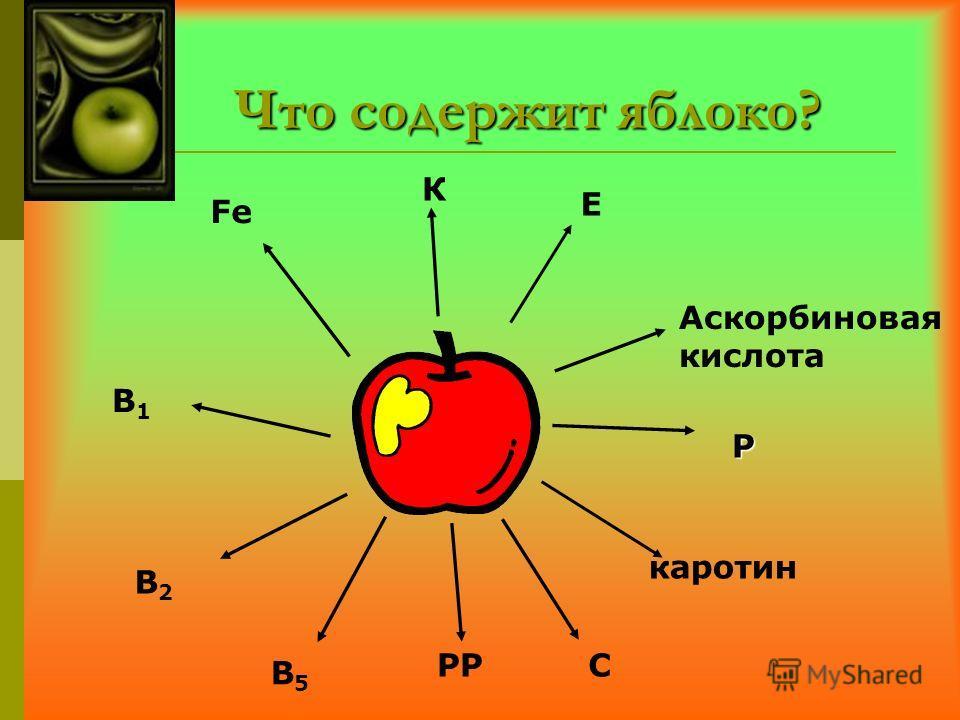 Что содержит яблоко? каротин Аскорбиновая кислота Р Е К СРР В5В5 В2В2 В1В1 Fe