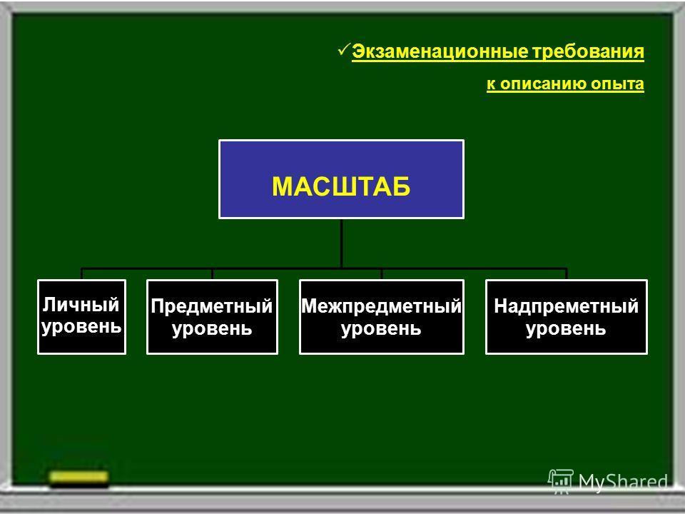 МАСШТАБ Личный уровень Предметный уровень Межпредметный уровень Надпреметный уровень Экзаменационные требования к описанию опыта