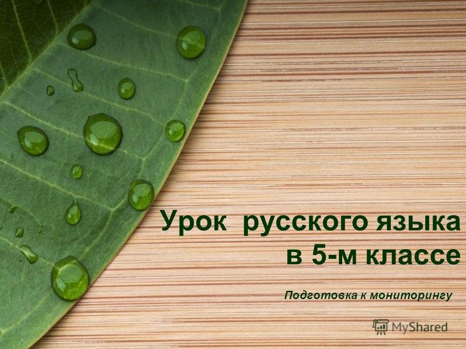 Урок русского языка в 5-м классе Подготовка к мониторингу